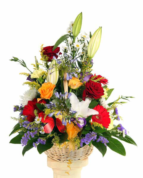 Picture of Ultimate Basket of Blooms