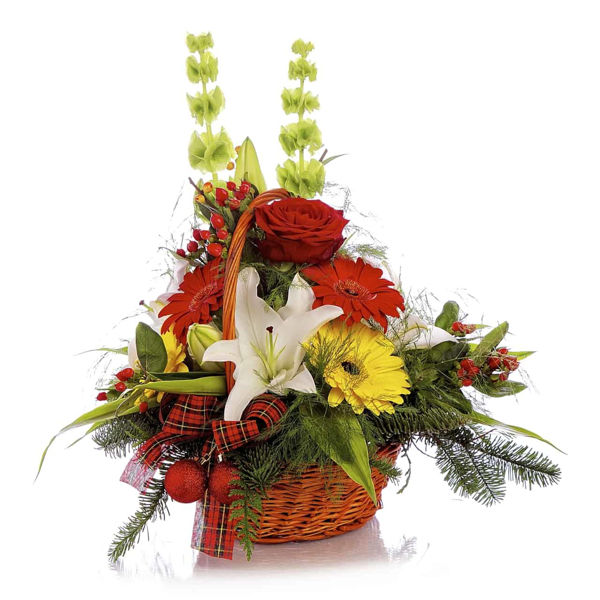Picture of Gerbera  Goodwill  Basket